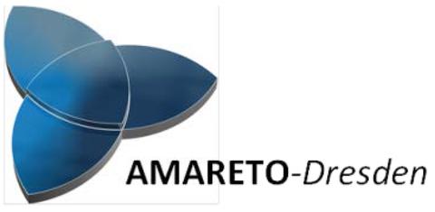 Das Ministerium für Wissenschaft und Kunst fördert mit Mitteln des EU-Strukturfonds EFRE von 2017 bis 2020 das Verbundprojekt AMARETO in Höhe von 5,5 Millionen Euro. Die Professur ist mit einem Teilprojekt zur integrativen Prozess- und Strukturanalyse beteiligt.