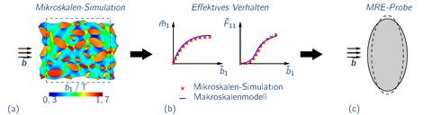 Datengetriebene Simulation isotroper Materialien: (a) KNN zum Ersetzen eines klassischen Materialmodells und (b) virtueller Pobekörper zur Datengenerierung unter uniaxialem Zug.