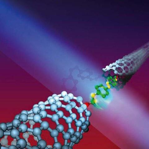 Model of an electric switch made of an azobenzolmolecule between two carbon nanotubes (Franz Stadler, Regensburg)