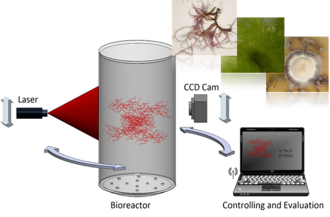Schematischer Aufbau des Sensorsystems