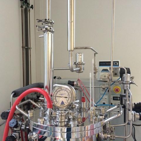 Bioreactor before cultivation