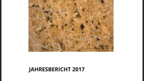 Titelbild Tätigkeitsbericht 2017