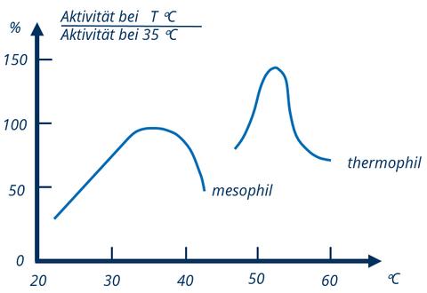 Aktivität von Bakterien im Biogasreaktor