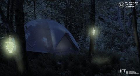 Das Foto zeigt ein Zelt im Wald. Links und rechts davon hängen an Bäumen zwei Lichter.