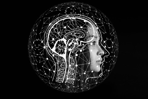 profile of a woman with a sketched brain