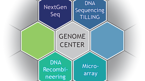 Logo Genome Center