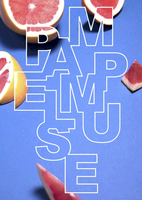 Pampel Muse