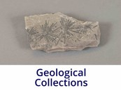 Geological Collections