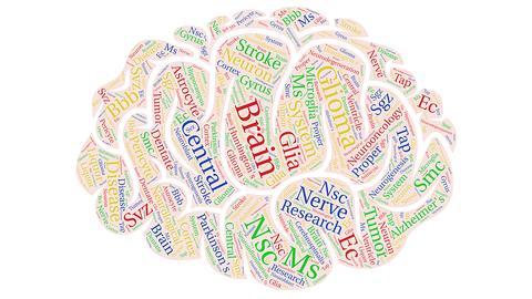 Brain_Topics