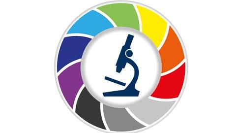 Logo vom BioDIP-Netzwerk