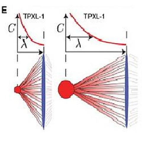 Fig.4 taken from Greenan et al, 2010.