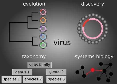 Computergestützte Virologie