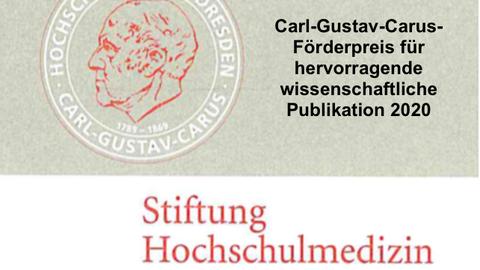 Logo Stiftung Hochschulmedizin Dresden