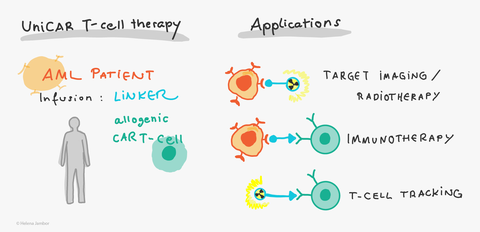 UniCar T-Cell Therapy
