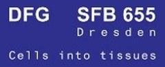 Logo SFB655