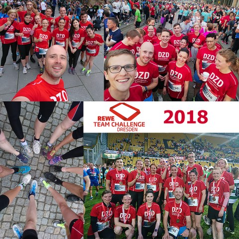 Participants of the REWE Team Challenge 2018
