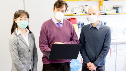 Prof. Dr. rer. nat. Kaomei Guan;  Prof. Dr. med. Stefan R. Bornstein PhD;  Dr. rer. nat. Coy Brunssen