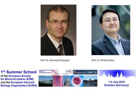 Prof. Dr. Henning Morawietz, Prof. Dr. Richard Siow, Summer School 2018