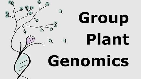 Group Plant Genomics