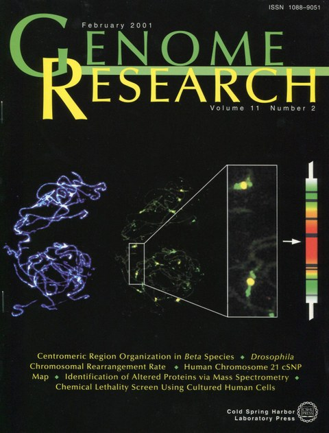 Gindullis, F., C. Desel, I. Galasso, T. Schmidt (2001): The large-scale organization of centromeric DNA in Beta species. Genome Res. 11:253-265