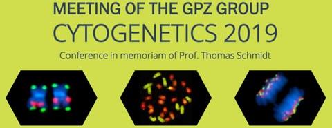 GPZ cytogenetics
