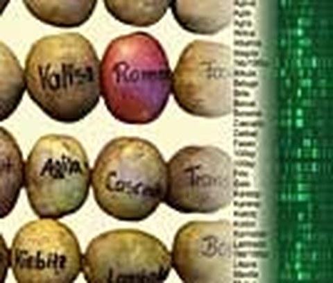Retrokartoffel