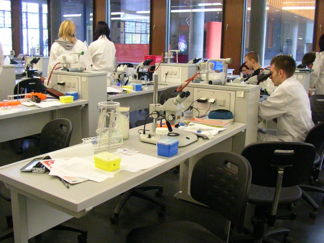 Biologie Studieren