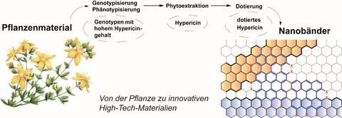 HyperiPhen