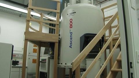NMR800