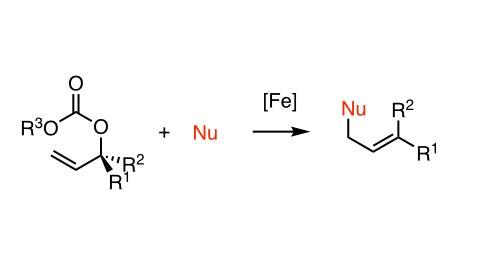 [Fe]-katalysierte Substitution in Allylposition