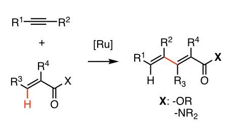 [Ru]-katalysierte C-C-Bindungsknüpfung