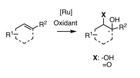 [Ru]-katalysierte Oxidation von Doppelbindungen