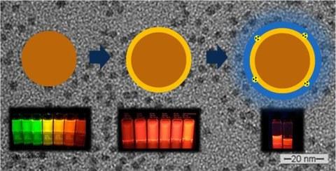 Schematische Dartstellung der Synthesestufen von CdSe über CdSe/CdS bis CdSe/CdS/65ZnS mit entsprechenden Photographien der kolloidalen Quantenpunktlösungen