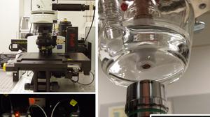 RRDE_Spectroscopy