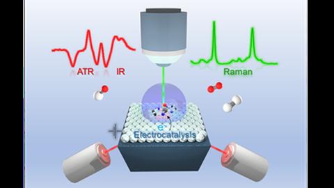 Vibrational Spectroelectrochemistry