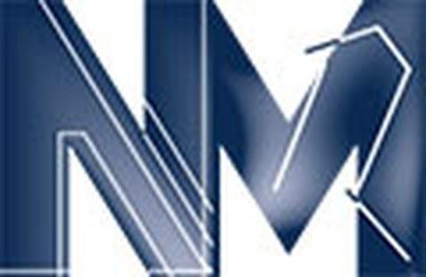 Logo des Institutes für Numerische Mathematik