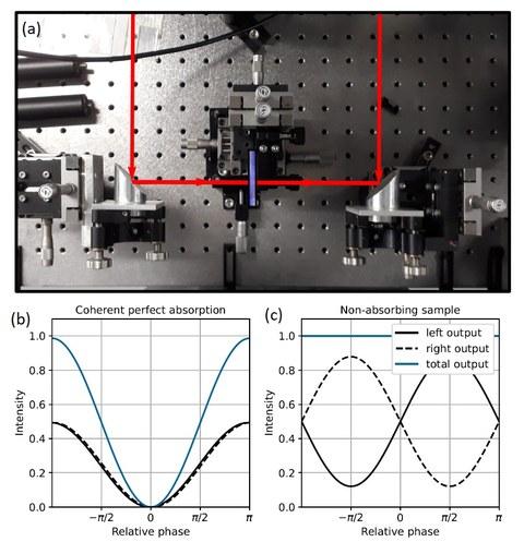 Abbildung: (a) Setup zur Messung der kohärenten Absorption. Das Verhalten der Ausgangsintensitäten in Abhängigkeit der relativen Phase eines perfekten kohärenten Absorbers (b) und einer nichtabsorbierenden Probe (c).