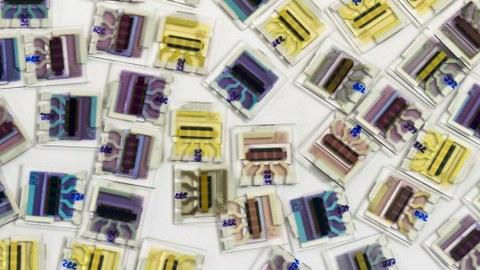 organische Solarzellen