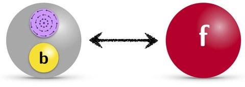 Particle-Vortex Duality