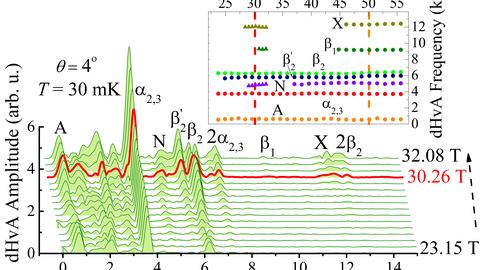 FFT-Spektren der dHvA-Oszillationen im statischen Feld in CeRhIn5.