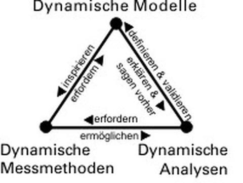 Dreieck dynamischer Methoden