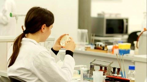 Biologie Mitarbeiter