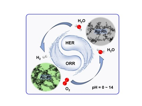 New-type noble metal aerogels were developed for outstanding pH-universal electrocatalysis toward hydrogen evolution reaction and oxygen reduction reaction.