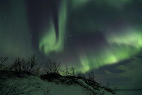 Nordlichter über Winterlandschaft