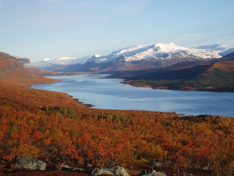 View of a wide valley with a long lake surrounded by forest in autumn colours. Farther away, snow-covered peaks