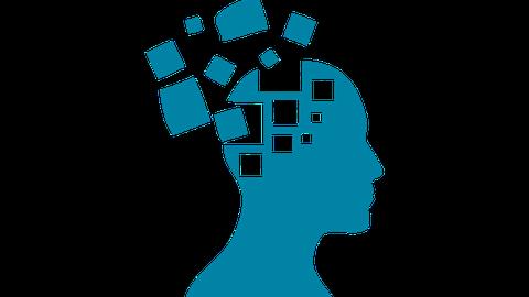 Roland Ernst Stiftung Logo