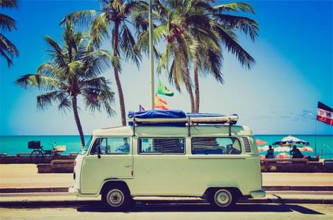 Bus unter Palmen