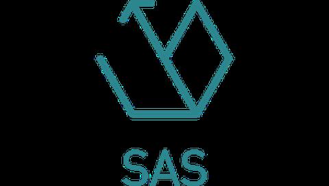 Icon SAS quer