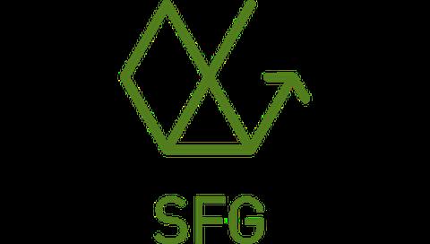 Icon SFG quer