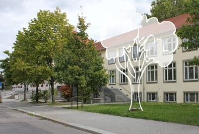 Projekt Baumpatenschaften